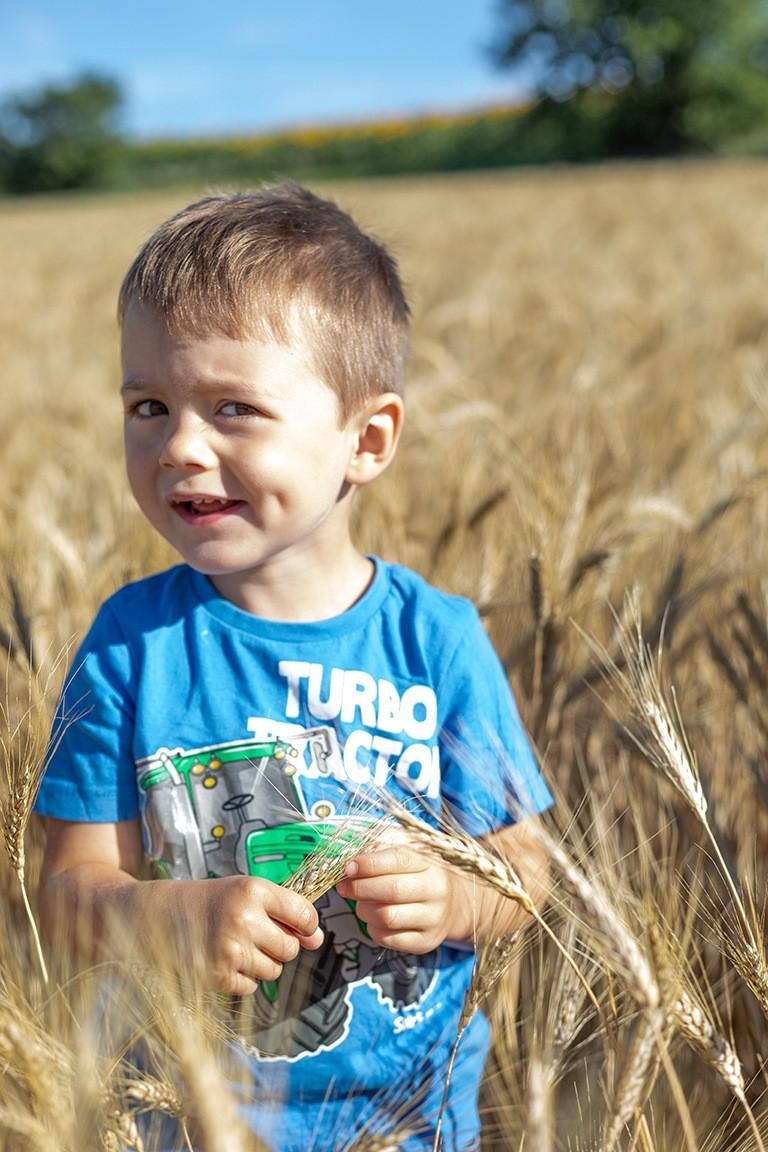 Kind-von-Recheis-Vertragsbaeuerin-im-Hartweizenfeld-fotografiert-von-Fotografin-Verena-Pelikan-im-Auftrag-von-Recheis